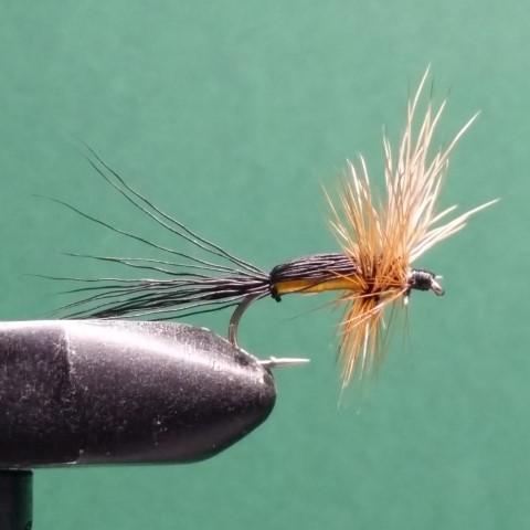 Humpy torrfluga