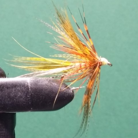 Yellow and Guinea bird wet fly